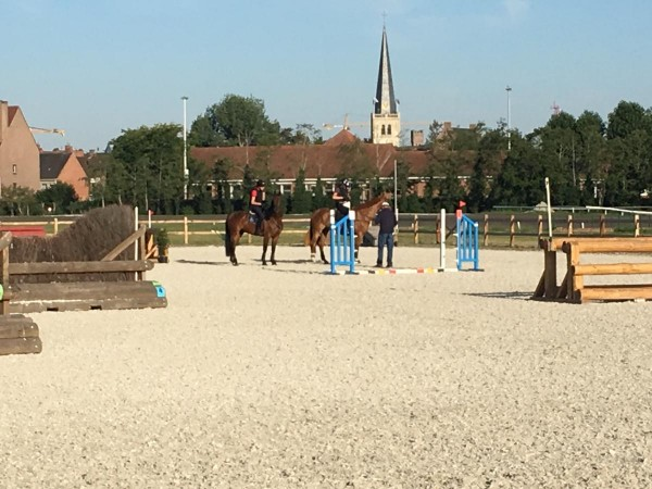 Eventing/Talentenplan: Geslaagde stage met Captain Mark Phillips